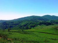 Montalbano Elicona - Trekking nel Bosco di Malabotta