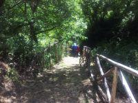 Montagnareale - Minitrek alla Sorgente Usignolo e Mulino di Capo